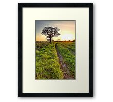 A Sunset For The April Fool Framed Print