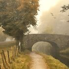 Autumn walk by Lyn Evans