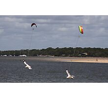 KITE FLYING SEAGULLS Photographic Print