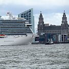 The Royal Princess meets Liverpool's Liver Building 5-8-15 by PhotogeniquE IPA