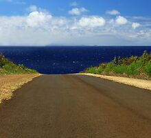 The Road To Maui by James Eddy