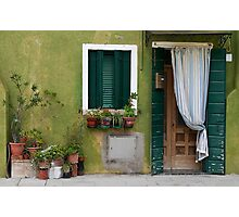 Old green stone house. Photographic Print
