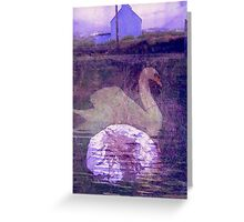 Fionnula Returns To Allihies Greeting Card