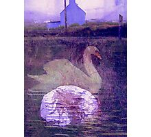 Fionnula Returns To Allihies Photographic Print