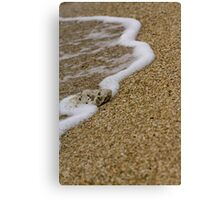 Beached Coral Canvas Print