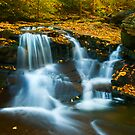 Pa country falls by ©  Paul W. Faust