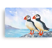 Two puffins Canvas Print
