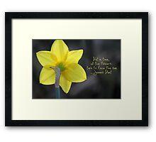 Daffodil - James Blunt Framed Print