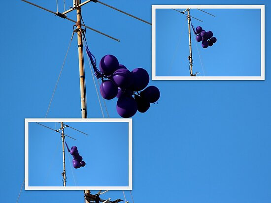 Purple Balloons on A TV Antenna by alycanon