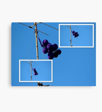 Purple Balloons on A TV Antenna Canvas Print