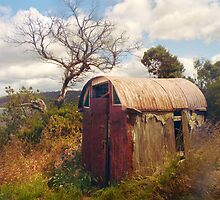 Old Hut, Shelly Beach by Roz McQuillan