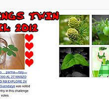 "BANNER WINNER CHALLENGE ""ALL THINGS TWIN"" APRIL 2012 by Guendalyn"