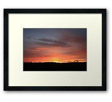 Norfolk coral Framed Print
