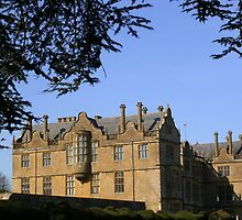 Montacute House by lezvee