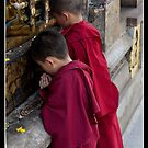 The Budding Buddhists by J.N. SINGH