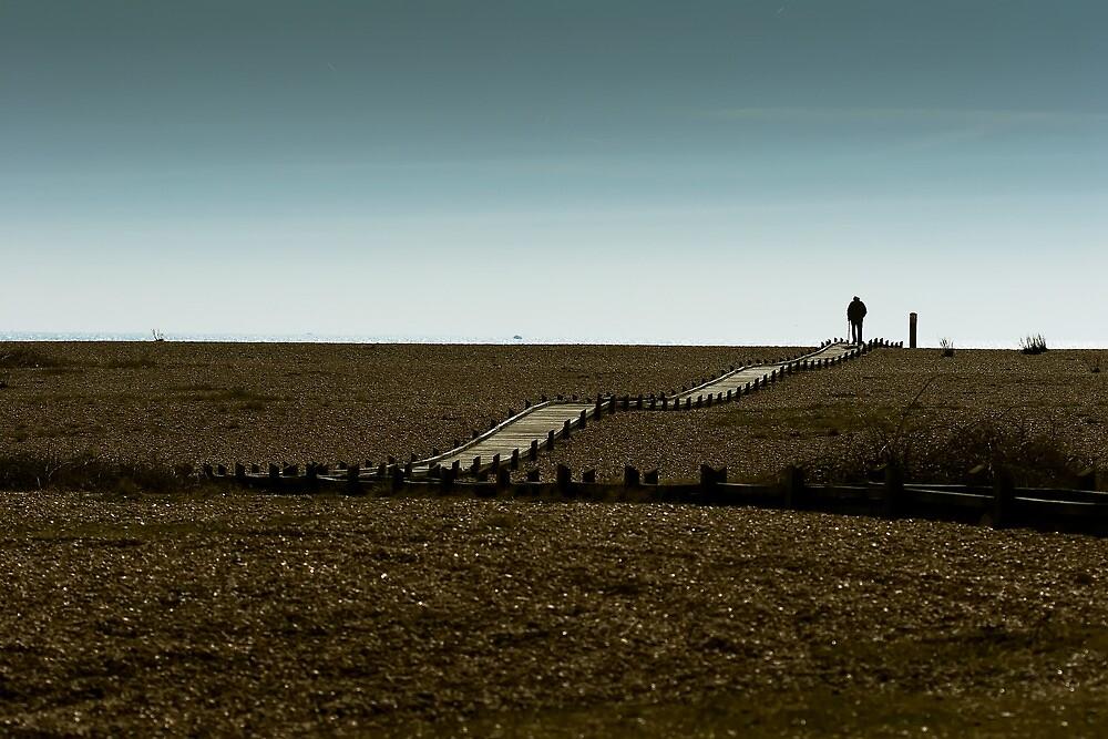 Lone walker by Ashley Beolens