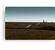 Lone walker Canvas Print