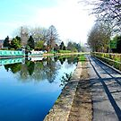 CANAL TOWPATH REFLECTIONS... by ronsaunders47