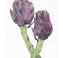 Purple Artichoke Love by Mariana Musa