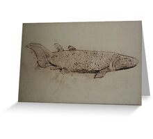 Canowindra Grossi Greeting Card