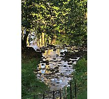 The flow of the river.. Photographic Print