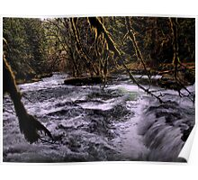 In The Dark ~ Brice Creek ~ Poster