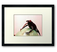 Smoking May Harm Your Frog Framed Print