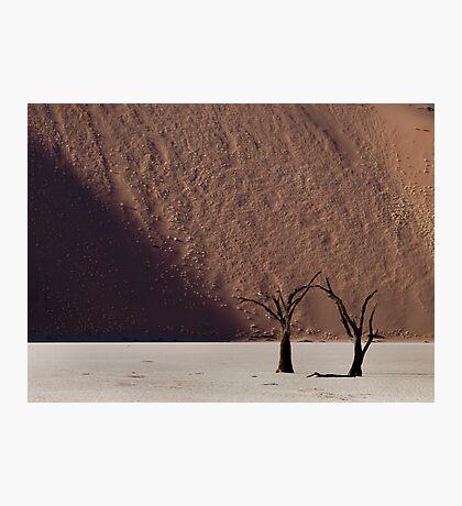 Dead Vlei Photographic Print