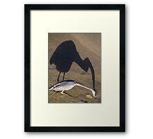 Now I Have Caught You... - Ahorita Yo He Capturarte... Framed Print