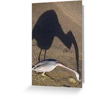 Now I Have Caught You... - Ahorita Yo He Capturarte... Greeting Card
