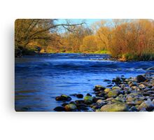 Island in the Stream, River Tees, England 1st April 2012 Canvas Print
