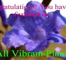 New All Vibrant Plants feature banner by ♥⊱ B. Randi Bailey