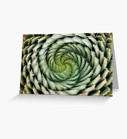 spiral aloe - lesotho's endangered species Greeting Card