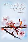 The Love of a Godly Mother (Card) by Tracy Friesen