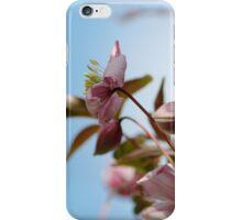 Spring IPhone & IPod case iPhone Case/Skin