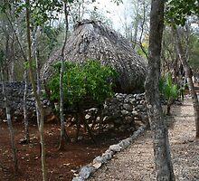 Chief Nando's Cottage, Xtabay Kaan, Yucatan, Mexico by Allen Lucas