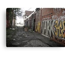 alley (project: desolate) Canvas Print