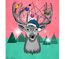 Christmas deer Photographic Print