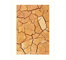 Footprint in the Cracked Earth Art Print