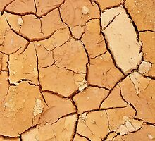 Footprint in the Cracked Earth by Scott Mitchell