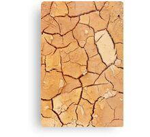 Footprint in the Cracked Earth Metal Print