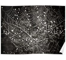 What a tangled web we weave... Poster