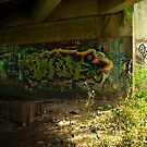 Sydney Graffiti #6 by Nenad  Njegovan