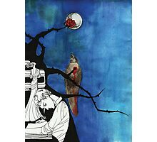 The Nightingale and the Rose Photographic Print