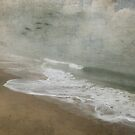Silent Shore by Susan Werby