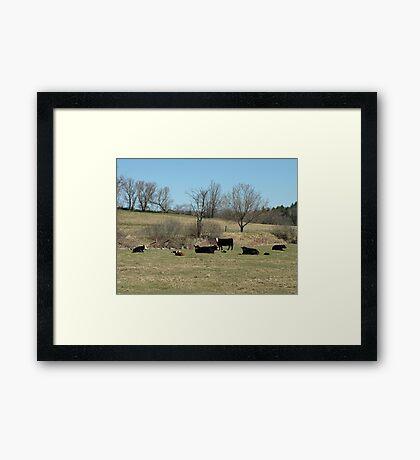 Spring In Dartford Framed Print