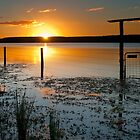 Lake Clarendon 2 - Lockyer Valley Qld Australia by Beth  Wode