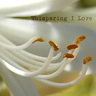 Whispering I Love You by Eve Parry