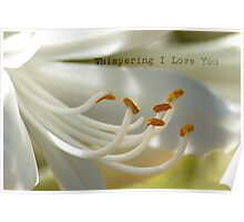 Whispering I Love You Poster