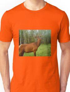 Bull Elk in Velvet Unisex T-Shirt